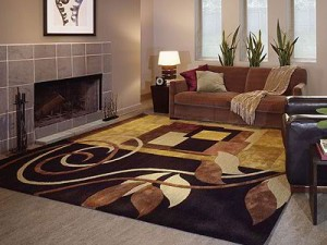 Thousands Of Area Rug Choices At Modern Carpet One. Modern ...